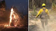 Panic as out-of-control wildfires burn across US