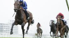 Talking Horses: Hukum can pull off Classic first for Burrows in St Leger