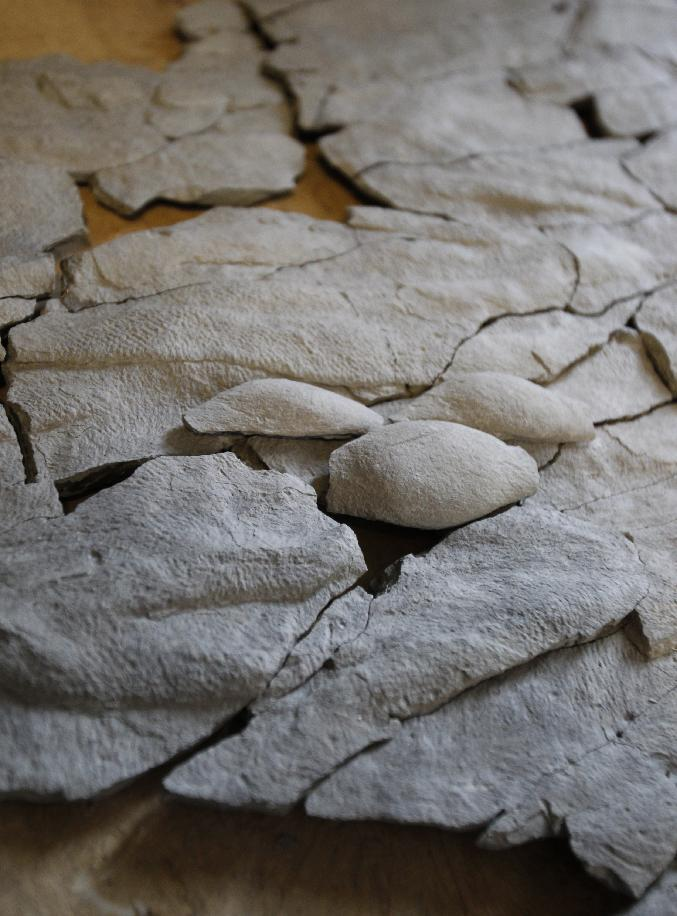 """This April 20, 2012, photo, shows a fossil at Caster Library on the campus in Cincinnati. Experts in the U.S. are trying to figure out what the 450 million-year-old fossil dubbed """"Godzillus"""" used to be. The 150-pound fossil recovered last year in Kentucky by amateur paleontologist Ron Fine is more than 6 feet long. (AP Photo/The Cincinnati Enquirer, Gary Landers) MANDATORY CREDIT; NO SALES"""