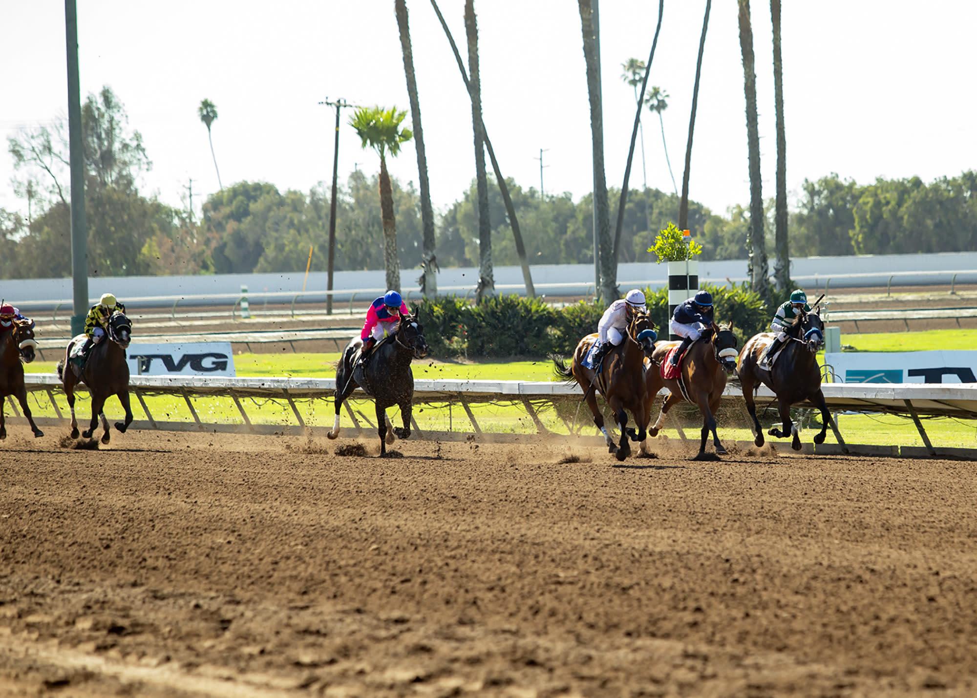 Los Alamitos Horse Racing