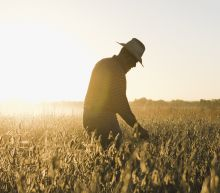 Will farmers re-elect President Trump?