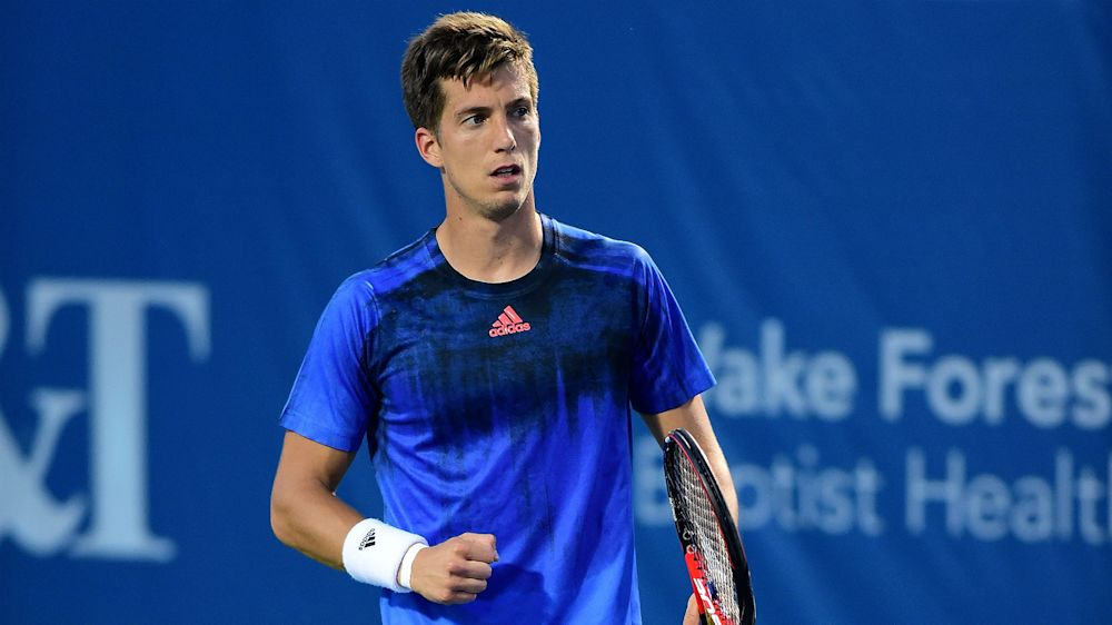 Qualifiers Bedene and Djere march on in Budapest