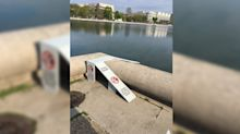Duckling ramp on Capital Hill gets some quacking