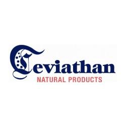 Leviathan Natural Products Announces R&D Hemp Joint Venture with Medical Saints