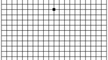 Mira esta cuadrícula: ¿todas las líneas son rectas?