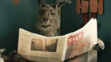 """""""Die Känguru-Chroniken"""" im Kino: Das müssen Sie über den Känguru-Hype wissen"""