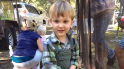 Two-Year-Old Dies Twice and Now Fights for His Life After Venomous Snake Bite