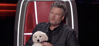 Shelton: Pick me or puppy goes back to the pound
