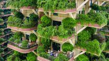 Plantas 'invadem' prédios na China e fazem moradores abandonarem imóveis