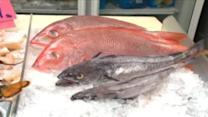 Study: 39-percent of fish mislabeled