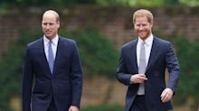 Princes William and Harry shoulder to shoulder at unveiling of statue of Diana