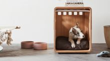 Yes, Dog Crates Can Be Stylish, and This One From Fable Is Proof