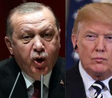 Erdogan, Trump consider creating security zone in Syria