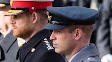 Prince Harry's talks with William and Charles 'didn't go as hoped'