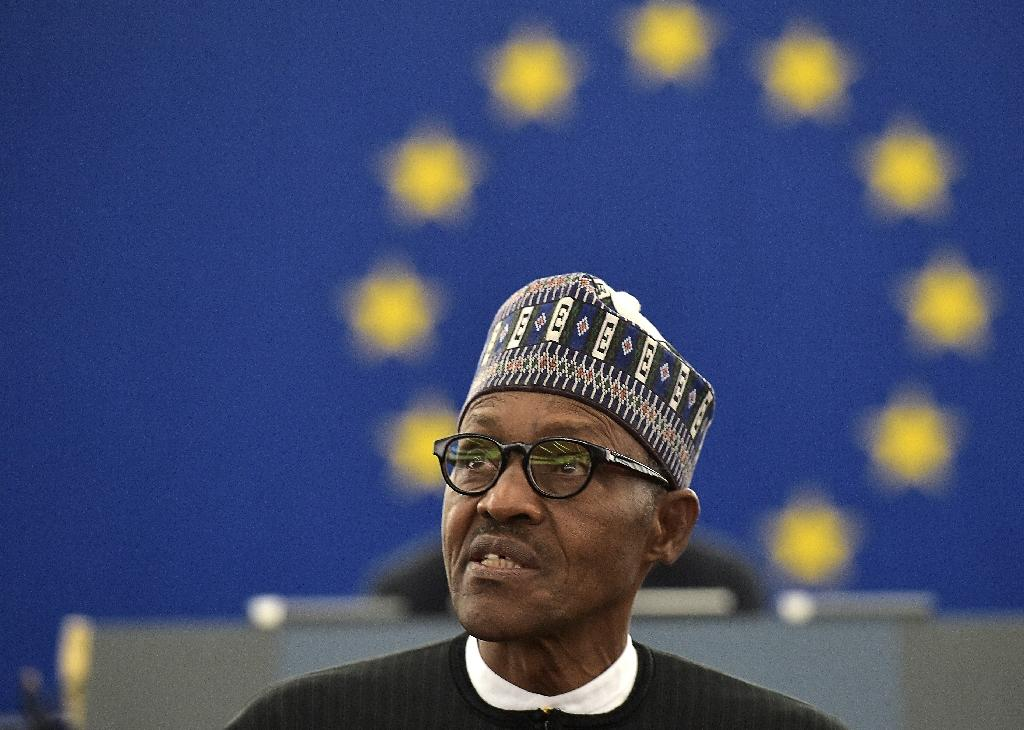 Nigerian President Muhammadu Buhari speaks during a plenary assembly at the European Parliament, in Strasbourg, eastern France, on February 3, 2016 (AFP Photo/Patrick Hertzog)