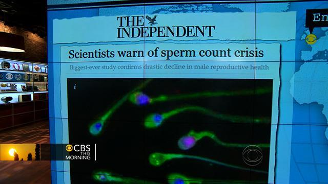 Headlines: Average sperm count falls