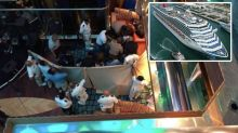 Girl, 8, falls to her death on cruise ship in front of horrified passengers
