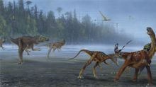 'Remarkable' meat-eating dinosaur officially recognised after 30 years