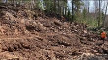 RT Minerals Corp. Reports At-Surface Green Carbonate Mafic, Ultramafic Outcrop Assay-Confirmed as Auriferous (Link-Catharine Gold Property, Kirkland Lake)