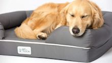 A doggone good deal: Shop memory foam dog beds and premium pet blankets for almost 30 percent off today