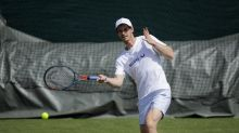 'I decided to give painting a go': Andy Murray reveals artistic side