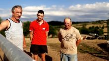 """""""Il n'y a plus un brin d'herbe pour les vaches"""" : les agriculteurs à nouveau frappés par la sécheresse en Saône-et-Loire"""