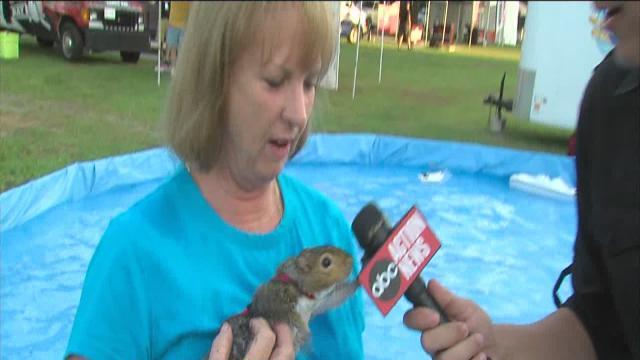 ABC Action News: Weekend Edition: Pet-A-Palooza