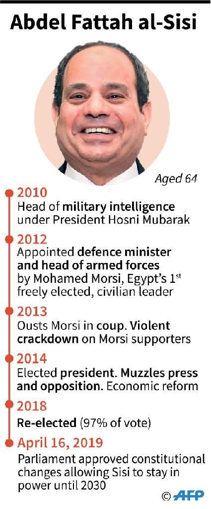 Profile of Egyptian President Abdel Fattah al-Sisi. (AFP Photo/)