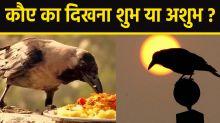 Crow Shubh Ashubh