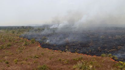 Record number of fires burning in the Amazon