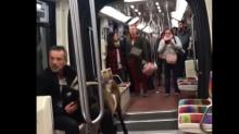 ¿Qué hacían tres cabras viajando en el metro de París?