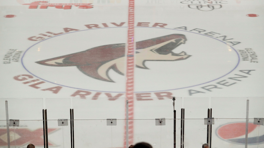 Coyotes not helping NHL's efforts to combat racism
