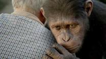 Director And Lead Ape Talk About Rise Of Planet of the Apes