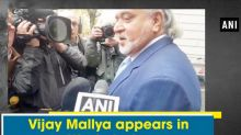 Vijay Mallya appears in Westminster Court in extradition case