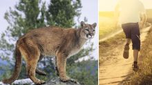 Boy attacked by mountain lion outside his home