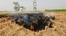 Insight: The burning truth - as farmers set fire to fields, Delhi braces for choking smog