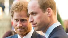 Prince Harry 'called Prince William a 'snob' over Meghan remark'