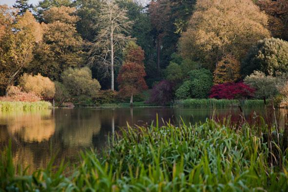 <p> Beyond the garden rooms, providing spectacular coloured blooms at every turn, the lush woodlands of Mount Stewart come into their own. Follow the lake walk to discover the ornamental trees and shrubs in their autumn coats of red and gold, reflected in the still water of the lake.</p>