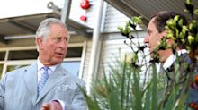 Prince Charles fascinated by 'dig for victory spirit' which 'swept through' Britain during coronavirus pandemic