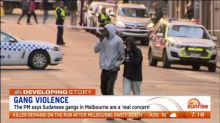 PM says Sudanese gangs in Melbourne are a 'real concern'