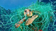 ArtScience Museum's Planet Or Plastic? exhibition spotlights plastic pollution crisis