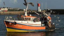 Coronavirus en Bretagne: «Continuez à manger du poisson»… Le cri d'alarme de toute une filière