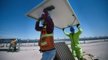Latin America's largest solar park turns Mexican desert green