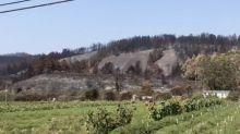 Damage From CZU Lightning Complex Seen in California