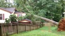 Storms topples trees, cause damage in Cary