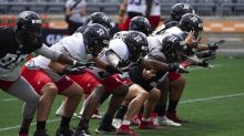 LaPolice, Nichols together again, this time with the CFL's Ottawa Redblacks