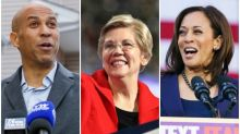 2020 Presidential Contenders: Who's Still Challenging Donald Trump and Who's Dropped Out (Photos)