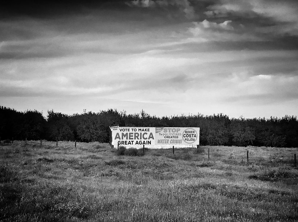 A sign advocating Donald Trump's presidential campaign near an almond orchard in Firebaugh, Calif. (Photo: Holly Bailey/Yahoo News)
