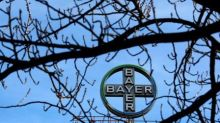 Brazil's review of Bayer's Monsanto takeover may be extended