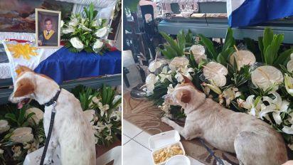Heartbreaking photos of dog next to teacher's coffin